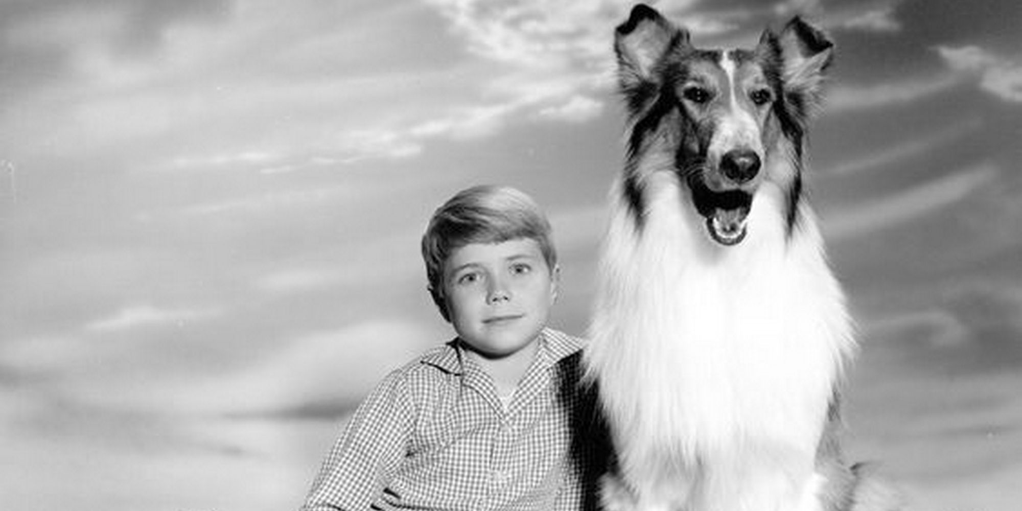 /images/upload/blog/1584/1584_Lassie.jpg