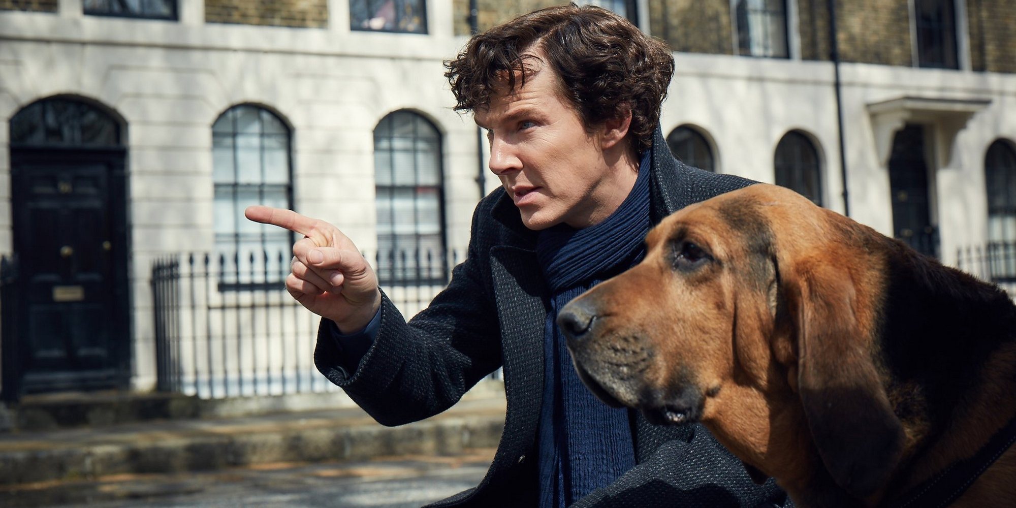 1676_Sherlock-Season-4-Sherlock-with-dog.jpg
